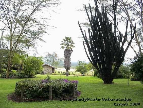 Lake Nakuru Lodge Garden