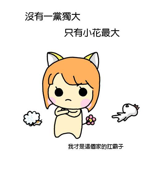 小花登場8