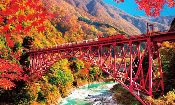 立山黑部-紅葉.jpg