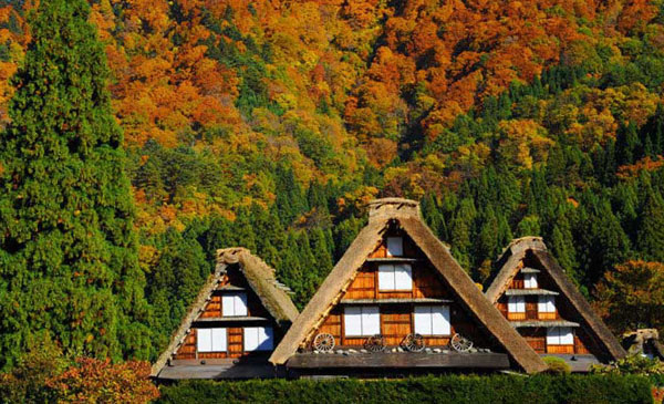 shirakawago_autumn.jpg