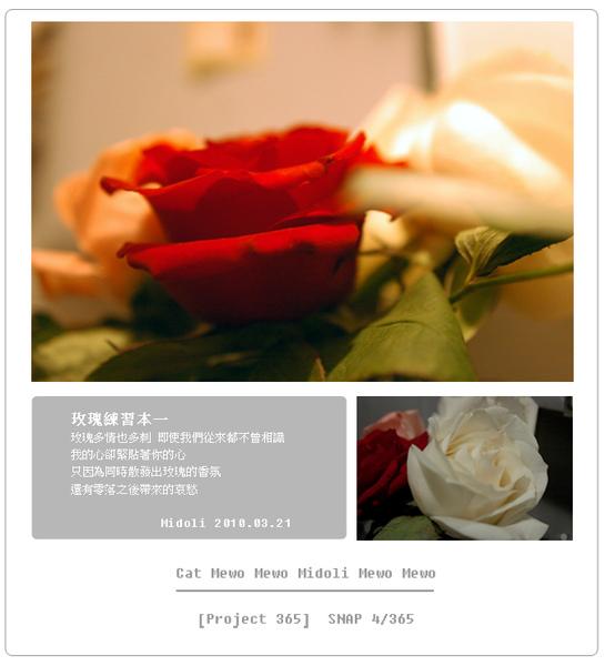 DSC_8563.jpg