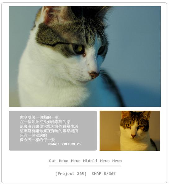 DSC_8566.jpg