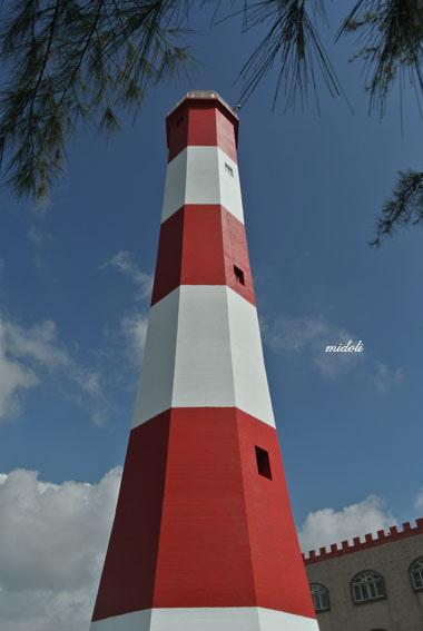 *: 旅行-清水高美燈塔&高美濕地 - 軒