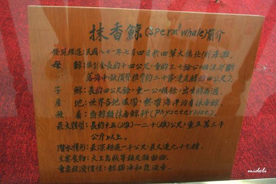 四草-17.jpg