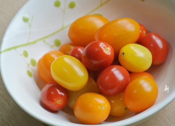 番茄-5.jpg
