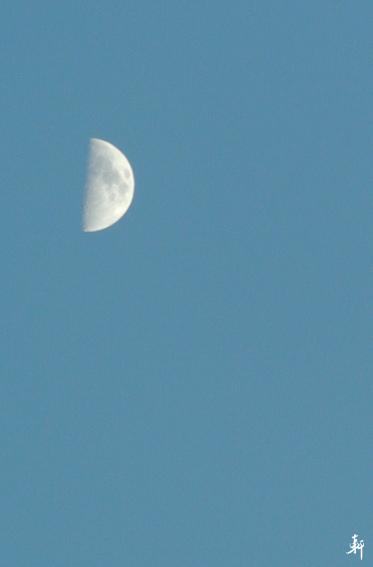 月兒-a.jpg