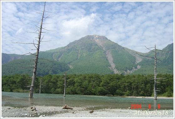 2004秋之旅 061.jpg