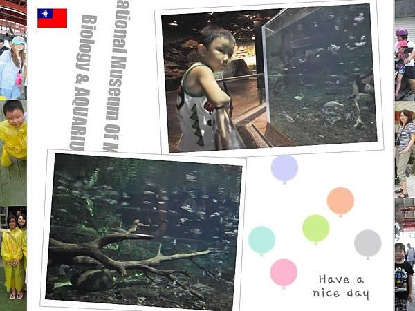 2012-8-11-12高雄墾丁-12