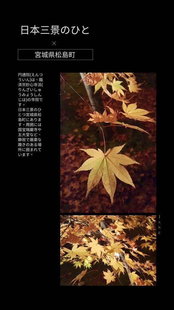 JanePhoto_1545440032460