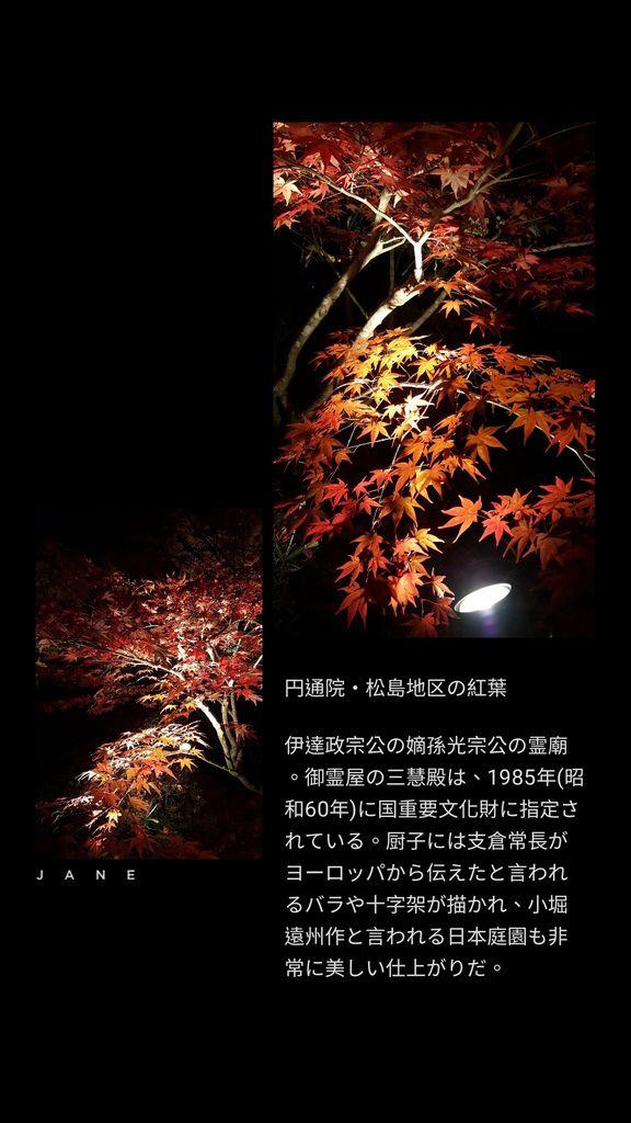 JanePhoto_1545439385461