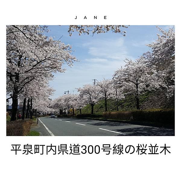 JanePhoto_1560991112599
