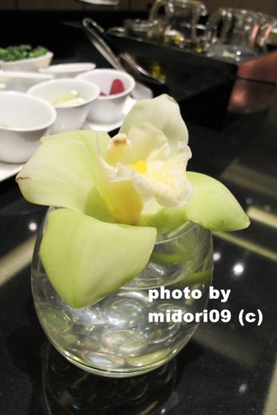 IMG_8070-1