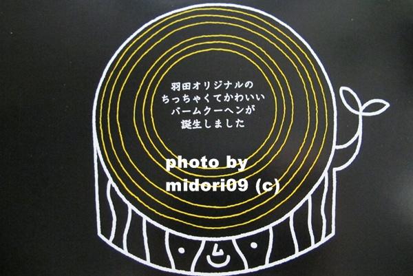IMG_8040-1