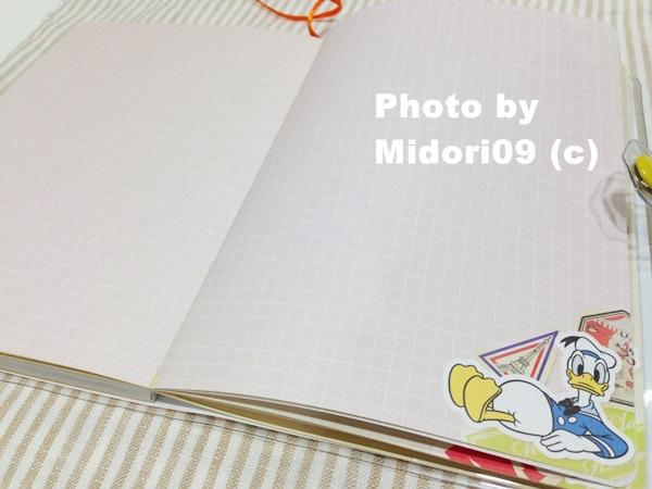 IMG_5465-1.JPG