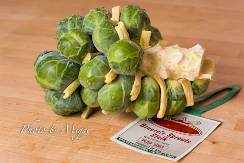 Brussels Sprouts fresh (1 of 1).jpg