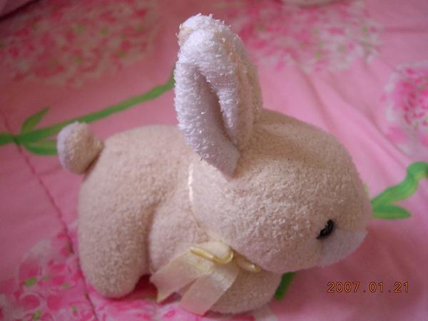 我家小兔兔