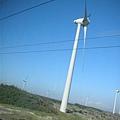 海線火車旁好多風車轉呀轉