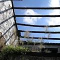 廢棄的古厝  屋頂就是藍天白雲