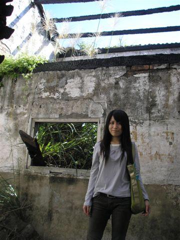 廢棄磚瓦和雜草形成一幅美景