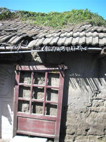 磚瓦、小巷