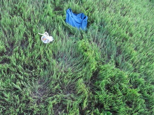 """草地上兩個人""""躺""""出來的凹洞"""