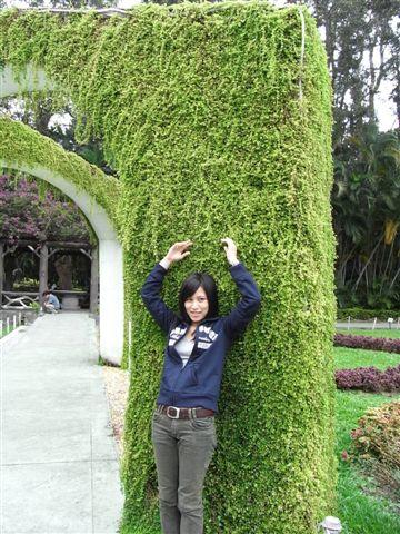喔!我以後也想要擁有一面綠牆!