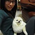 它是mimi~很小隻的博美