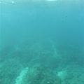 玻璃船下的海世界,真的很美!