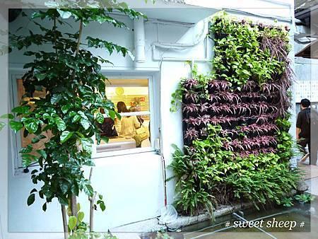 青田七六室外商店外牆