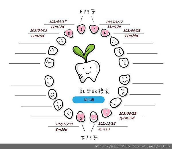 乳牙紀錄-4