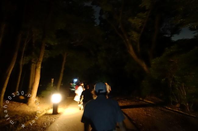 奈良若草山夜景鑑賞バス