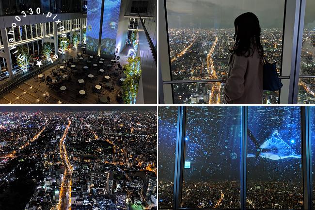 Wi-Ho! 特樂通 日本雙頻上網卡、日本藍鑽石plus WIFI分享器 - 去旅行 阿倍野HARUKAS 300展望台ハルカス300