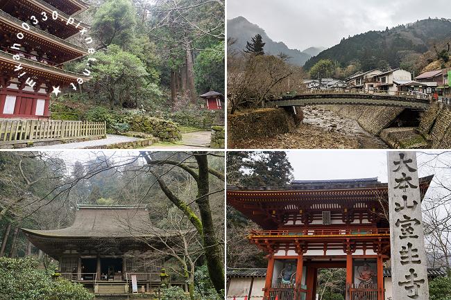 Wi-Ho! 特樂通 日本雙頻上網卡、日本藍鑽石plus WIFI分享器 - 去旅行 室生寺