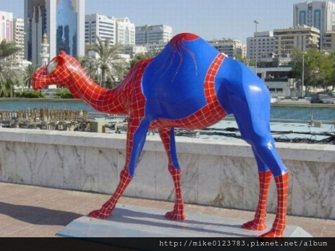 large_Spiderman_Camel_Funny_Picture_58918
