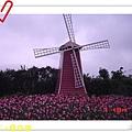nEO_IMG_DSC06357.jpg