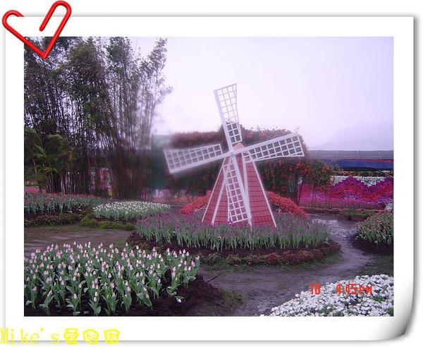 nEO_IMG_DSC06400.jpg
