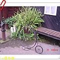 nEO_IMG_DSC06536.jpg