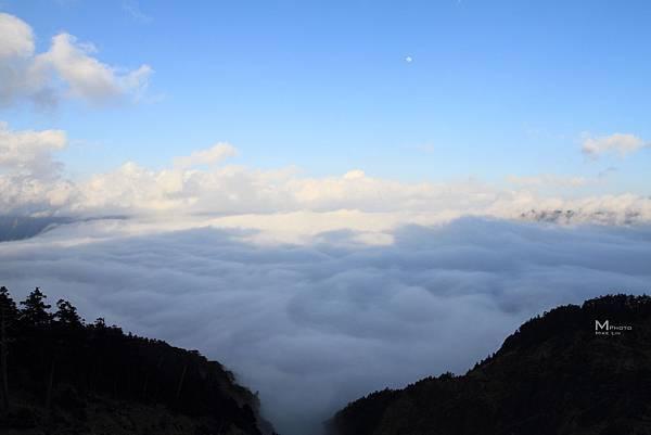 合歡山雲海