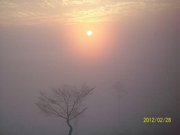 2012年2月28田中 056