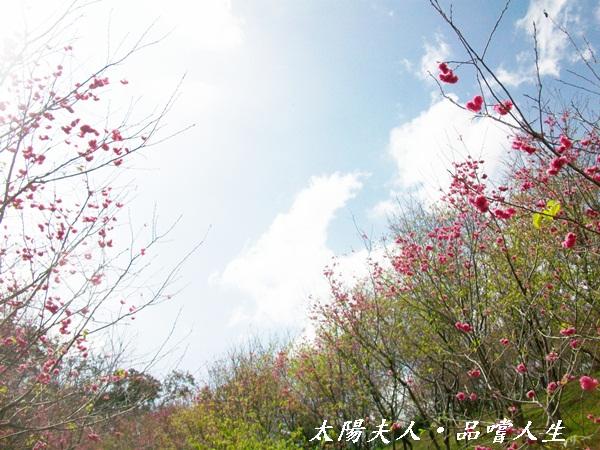 100_5571