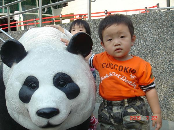和動物園的熊熊拍拍
