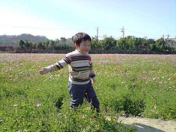 拈花惹草也好快樂