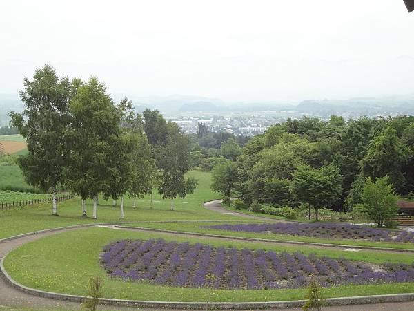 2012.7.16 上富良野