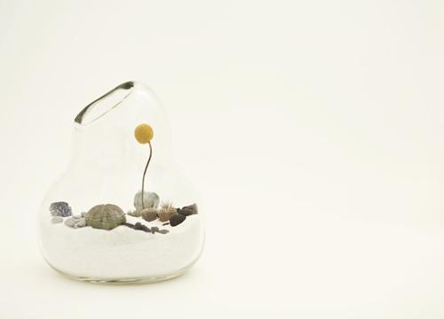 litill-terrariums-4.jpg