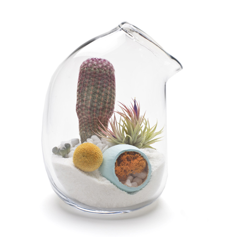 litill-terrariums-5.jpg