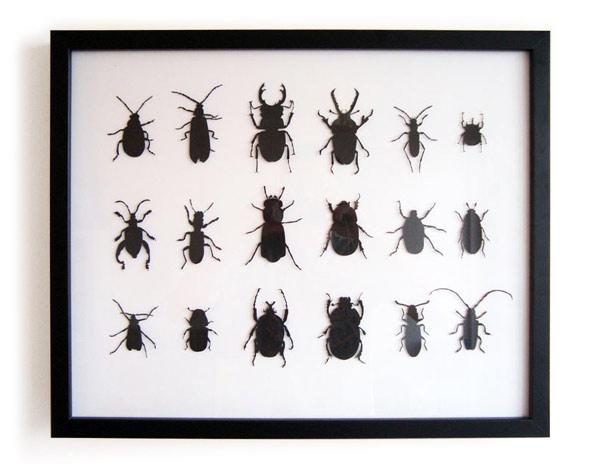Beetles-1_Lg.jpg