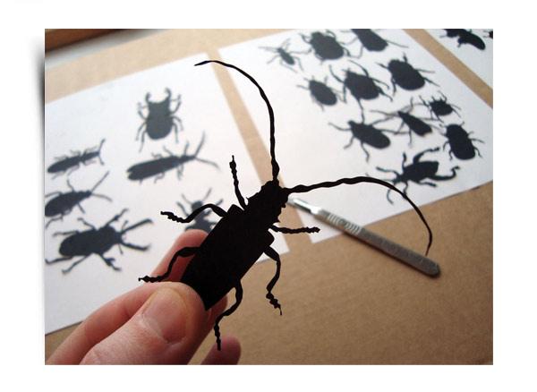 Beetles-2_LG.jpg
