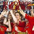 WSD-Euro2008final速報特刊-torres