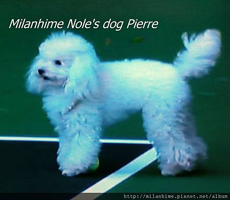 Nole-Pierre-201108-LA2.jpg