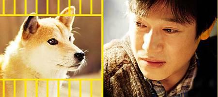 雅人-2013-Himawari和小狗的七天-g